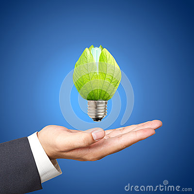 light bulbs on Business hand