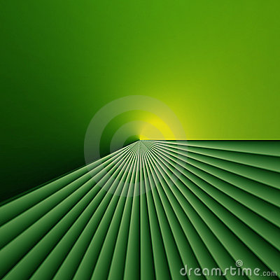 Light at the end of green fields