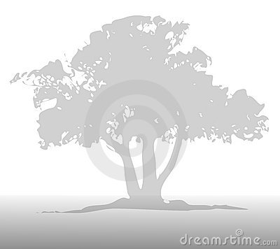 Light Gray Tree Background
