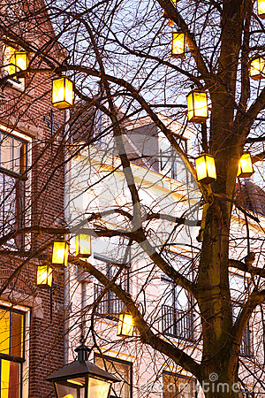 Light lanterns on a tree