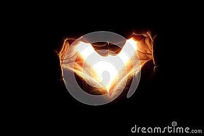 Light love hand