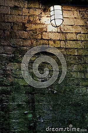 Light near mossy brick wall