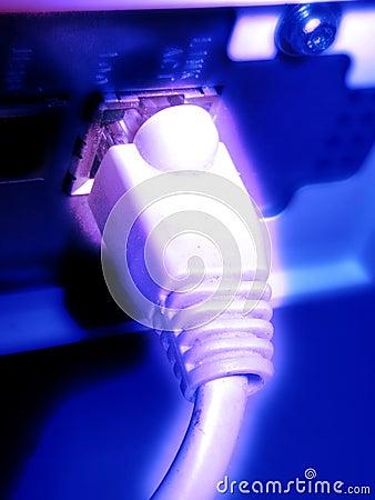 Free Light Network Royalty Free Stock Photo - 15435