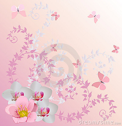 Light pink orchid decoration and butterflies