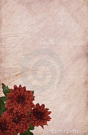 Free Light Red Paper And Chrysanthemum Stock Photo - 10478780