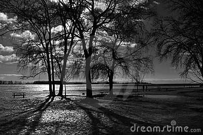 Light of serenity