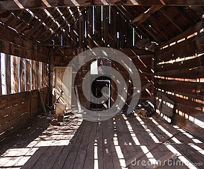 Light and Shade in an Old Shack