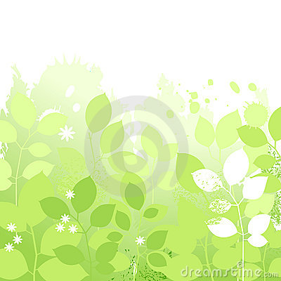 Light spring background