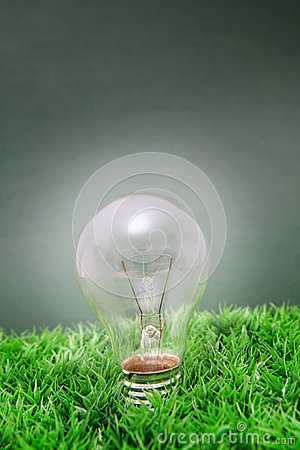 Lightbulb on green grass