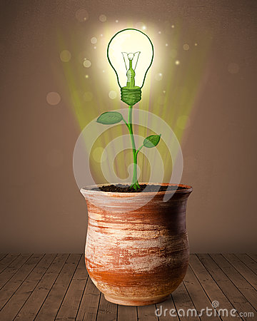 Free Lightbulb Plant Coming Out Of Flowerpot Stock Photos - 34185883