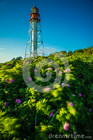 Free Lighthouse Royalty Free Stock Photo - 64040295