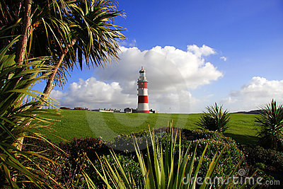 Lighthouse with palm tree, Plymouth, UK