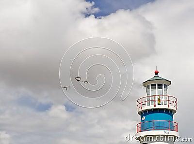 Lighthouse and sea birds