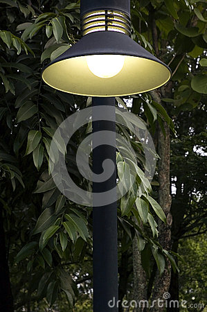 Lighting in park