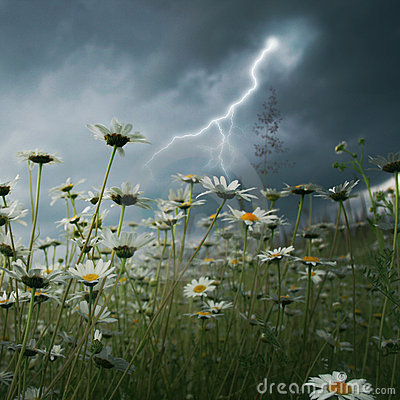Lightning strike over  field.