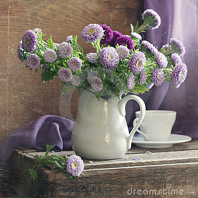 Free Lilac Asters Stock Photography - 11282612