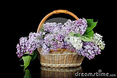 Lilac bouquet in a wattled basket