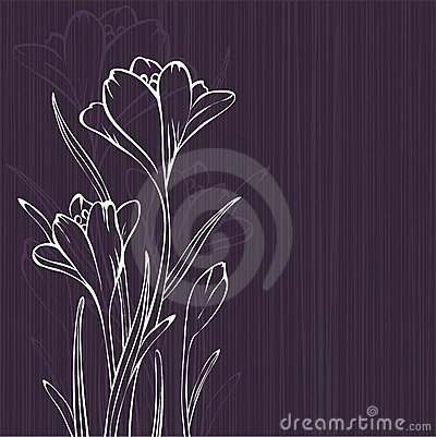 Lilac design with crocus