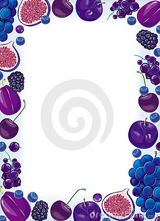 Lilac fruit and berries frame