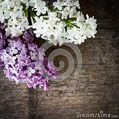 Lilac on wood