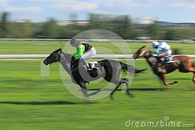 Lili in horse racing in Prague 2012 Editorial Stock Photo