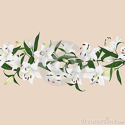 Free Lilies Almond Horizontal Seamless Vector Banner Stock Photography - 47777422
