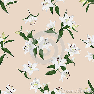 Free Lilies Almond Seamless Vector Background Stock Photo - 47285780