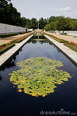 Lilly pond at American war cemetary