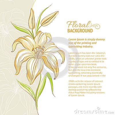 Lily flower background. Vector illustration