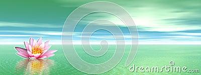 Lily flower in green ocean