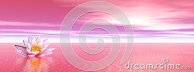 Lily flower in pink ocean