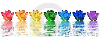 Lily flowers chakras