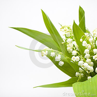 Lily-of-the-valley bouquet