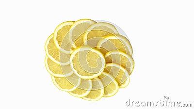 Limón amarillo, Citrus Limonum contra el fondo blanco, tiempo real, metrajes