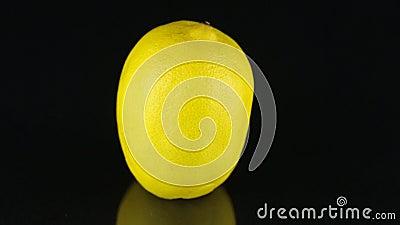 Limón giratorio en un fondo negro citrus almacen de video