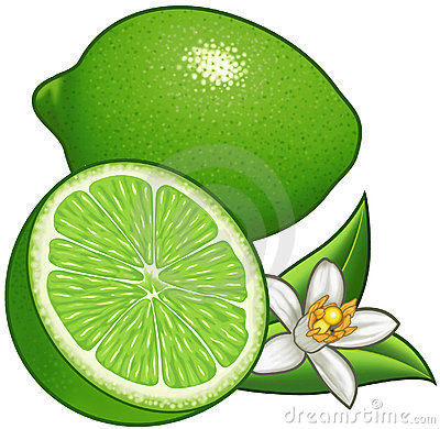 Lime Cartoon Illustration