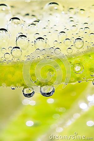 Lime Bubbles - Vertical