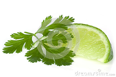 Lime and Cilantro or Coriander