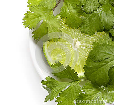 Lime and Cilantro or Coriander
