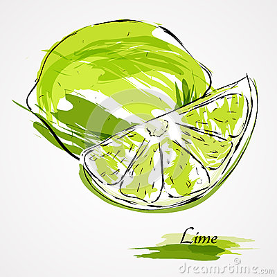 Free Lime Fruit Royalty Free Stock Images - 44441179