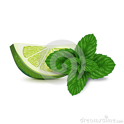 Lime slice with mint isolated on white