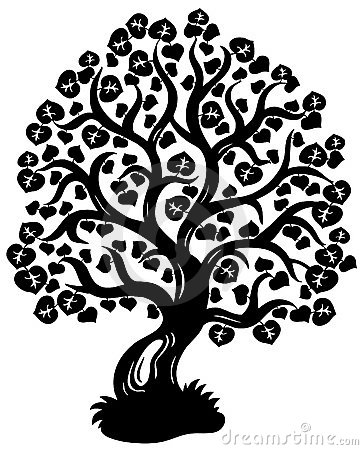 Lime tree silhouette Vector Illustration