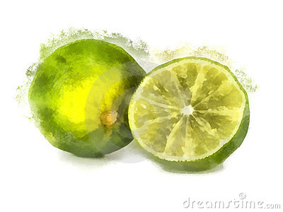 Lime watercolor painting