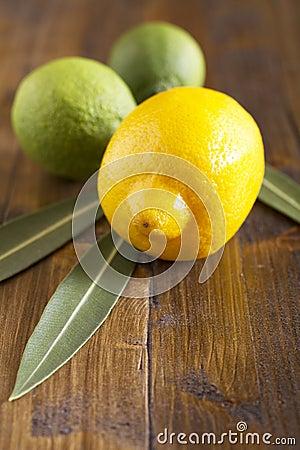 Limes and lemon
