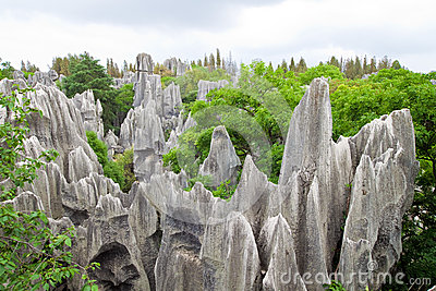 Limestone forest at Kunming Stone forest or Shilin