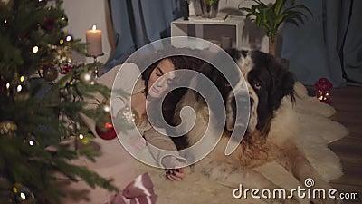 Linda mulher caucasiana adulta deitada nas costas do cão grande e dormindo São Bernard guardando os sonhos do seu dono em Nova vídeos de arquivo
