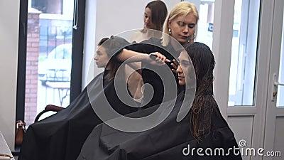 Linda mulher penteando cabelo molhado pincelada estilista cabelo feminino em salão Hairdresser Servindo Cliente Jovem Profissiona vídeos de arquivo