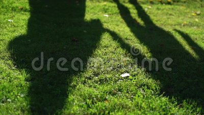Linda sombra de casais Pessoas andando ao ar livre no dia de verão Silhuette of bride and groom abraçando filme
