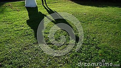 Linda sombra de casais Pessoas andando ao ar livre no dia de verão Silhuette of bride and groom abraçando video estoque