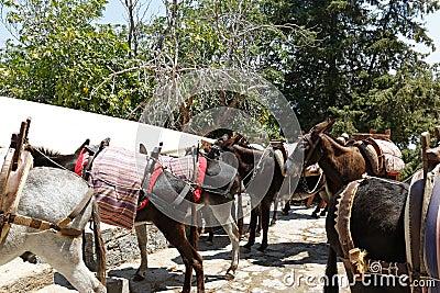 Lindos Taxi, Rhodes, Greece